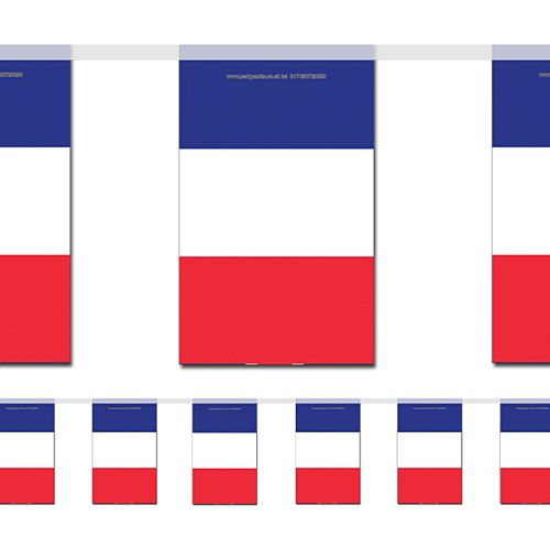French Large Flag Bunting 4m