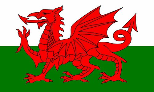 Welsh Polyester Fabric Flag 5ft x 3ft