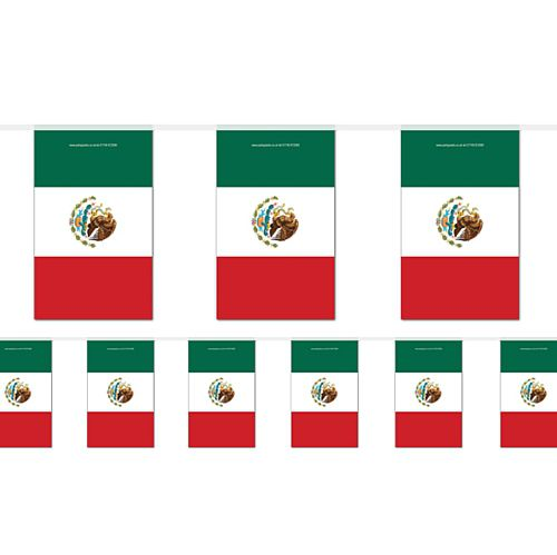 Mexican Flag Bunting - 2.4m