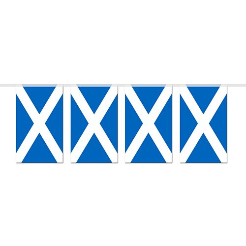 St Andrew's Small Flag Bunting 2.4m