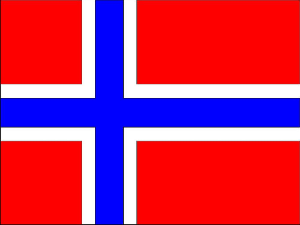 Norway Polyester Fabric Flag 5ft x 3ft