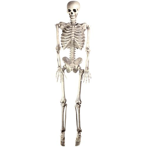 Halloween Skeleton Lifesize Hanging Prop Decoration - Plastic - 1.5m