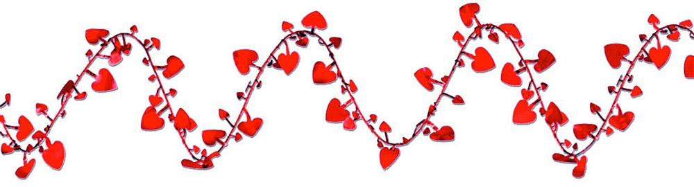 Wired Heart Garland 25ft