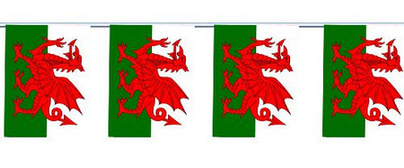 Welsh Cloth Flag Bunting 6m