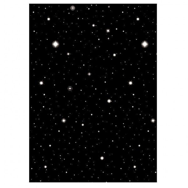 Starry Night Sky Room Setter 12.2m