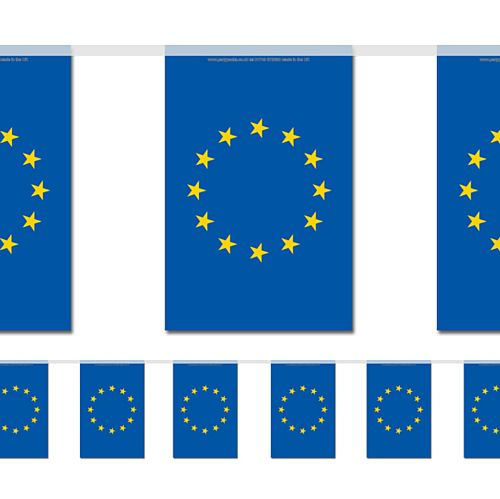 European Union Small Flag Interior Bunting 2.4m