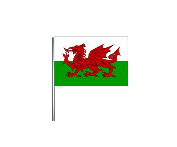 "Welsh Small Cloth Flag On A Pole - 9"" x 6"""