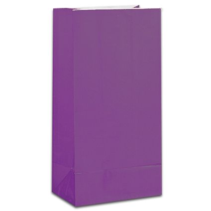 Purple Party Bags - Pack of 12