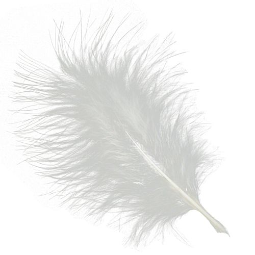 White Marabou Feathers - 15cm to 20cm - Pack of 12