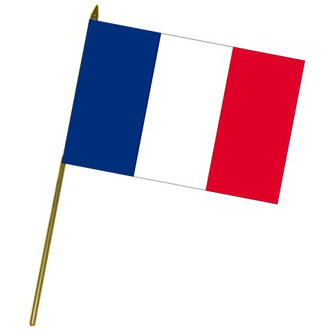 French Cloth Hand Flag - 18""