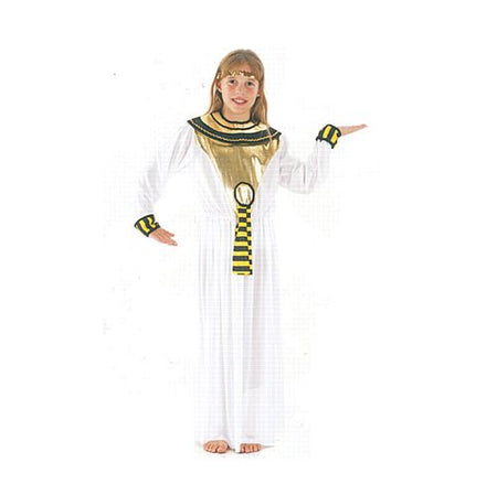 Click to view product details and reviews for Egyptian Cleopatra Costume Size Large.