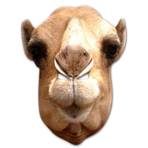 Camel Card Mask