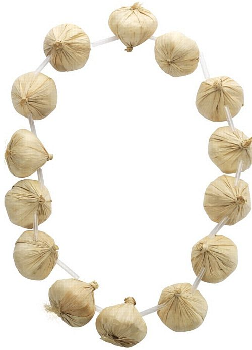 Garlic Neck Garland