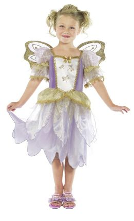 Fairy Princess Costume