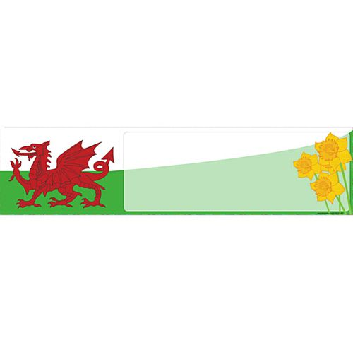 Welsh Themed Banner - 120 x 20cm