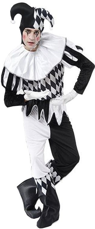 Harlequin Clown Male Costume