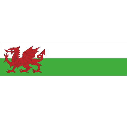 Welsh Themed Flag Banner - 120 x 30cm