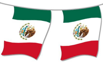 Mexican Large Flag Bunting - 4m