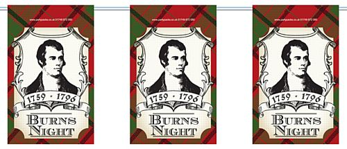 Burns Night Flag Interior Bunting - 2.4m