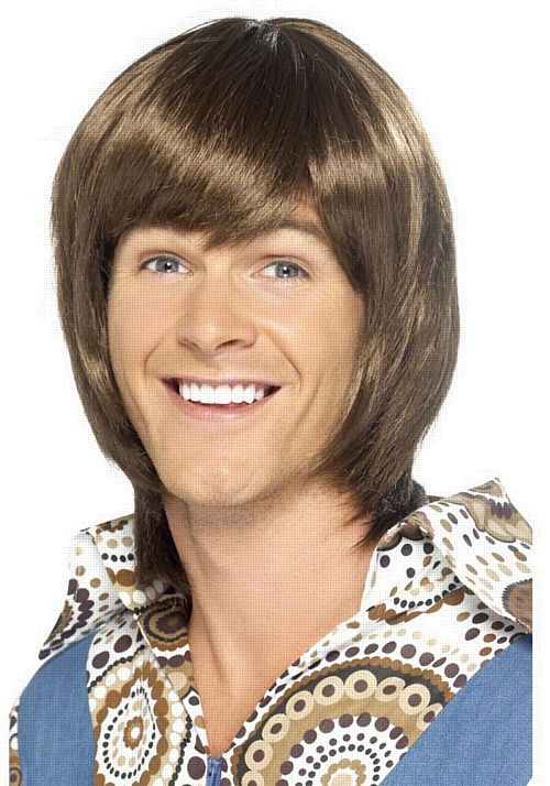 70's Heartthrob Wig
