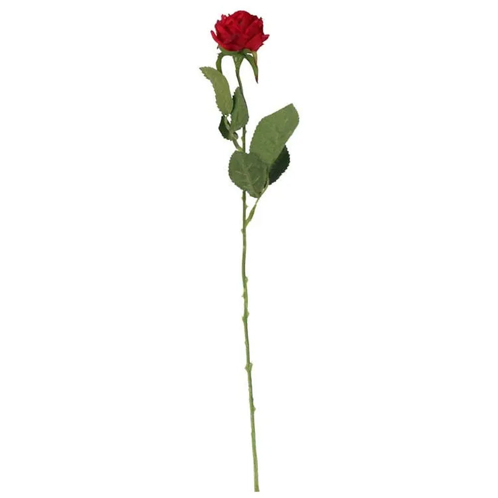Red Rose - 40cm - Each