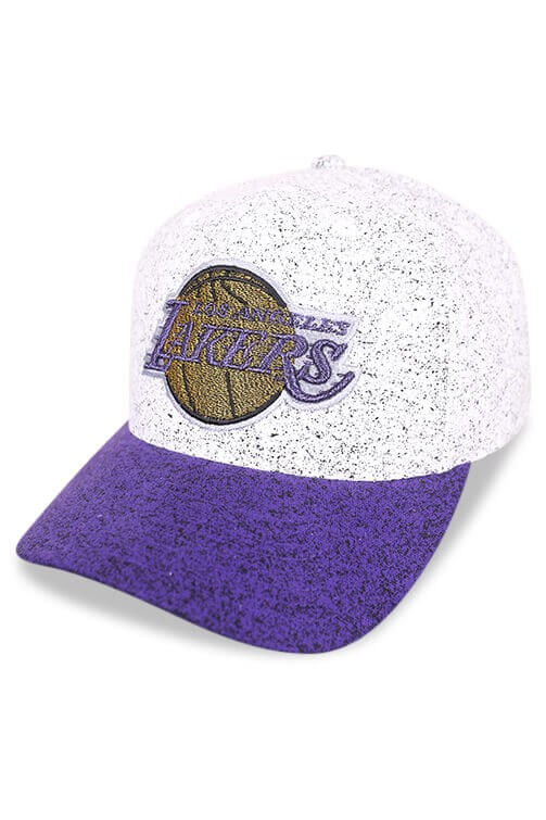 M&N Lakers No Rest Grey/Purple Snapback Angle