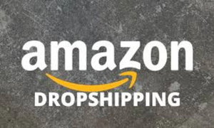 The perfect Amazon  Dropshipping guide for 2021