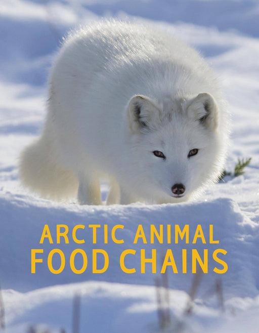 Arctic Animal Food Chains (English)