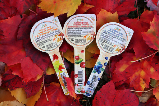 Maple & Fruit Flavoured Lollipop