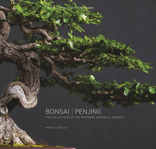Bonsai | Penjing