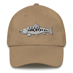 Salomon Fish, Embroidered Dad Hat