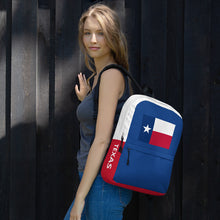 Load image into Gallery viewer, Texas Lone Star Flag, Backpack Multicolor