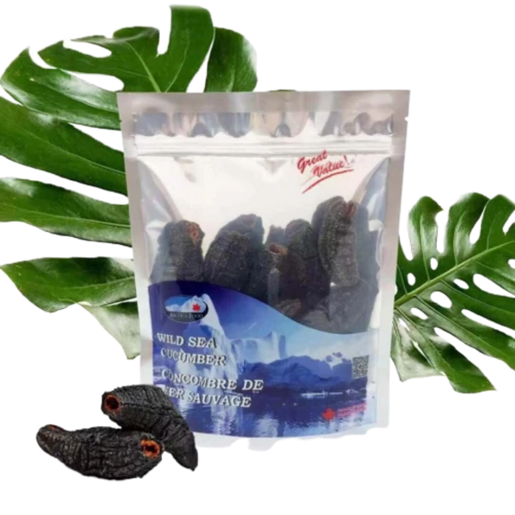 Arctica Food Wild Sea Cucumber Best Value