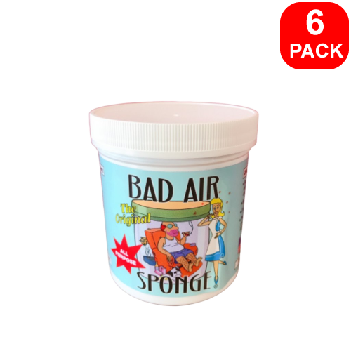 Bad Air Sponge All Purpose 400g 6 units