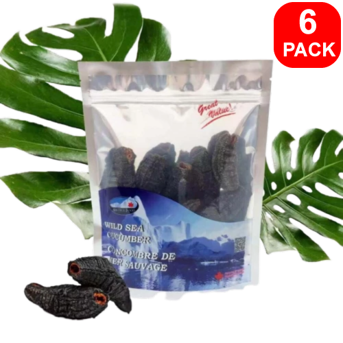 Arctica Food Wild Sea Cucumber Best Value 6 units
