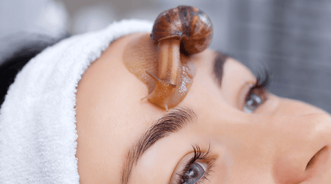Why K-Pop Stars Are Using Snail Mucin For Their Skin Problems