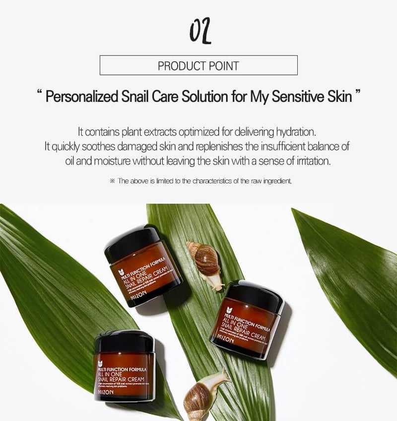 All In One Snail Repair Cream (75ml)