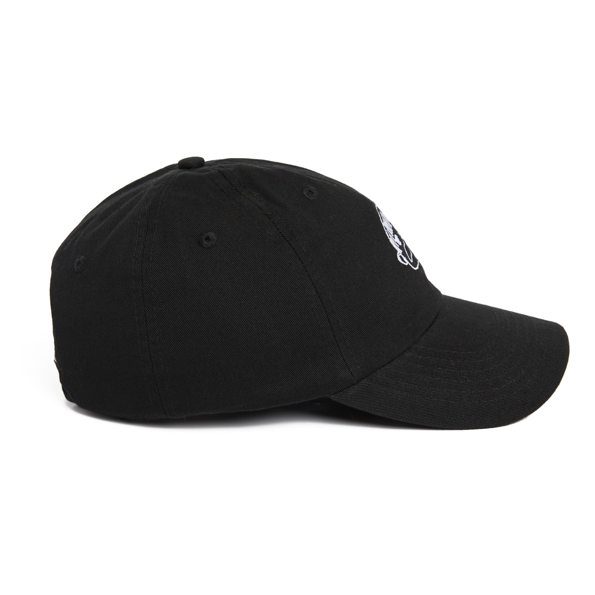 Lauren Tsai Cap (On Reserve!)