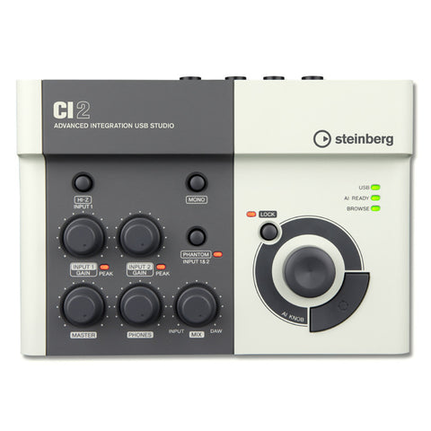 Steinberg CI2 USB Interface