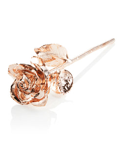 Premium Rose Gold Everlasting Rose