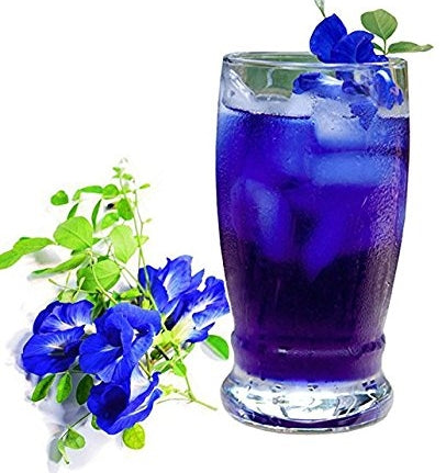 zi-chun-organic-butterfly-pea-flower-tea-anti-aging-autophagy-tea-glass