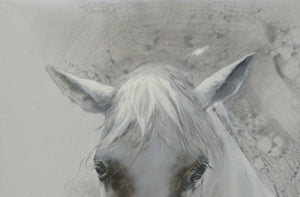 A White Horse Gazed Into The Distance, Like The Messenger Of Winter - arttide