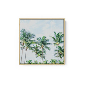 Southern Palms - BROOKVIEW STUDIO