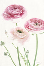 Load image into Gallery viewer, Light and Bright Floral VI - ELIZABETH URQUHART