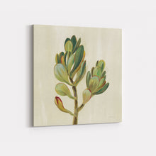 Load image into Gallery viewer, Front Yard Succulent II - SILVIA VASSILEVA