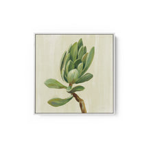 Load image into Gallery viewer, Front Yard Succulent III - SILVIA VASSILEVA