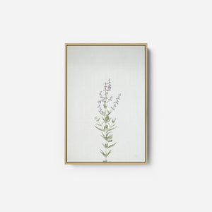 Simple Stems III - FELICITY BRADLEY