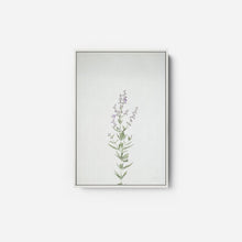Load image into Gallery viewer, Simple Stems III - FELICITY BRADLEY