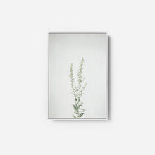 Load image into Gallery viewer, Simple Stems IV - FELICITY BRADLEY