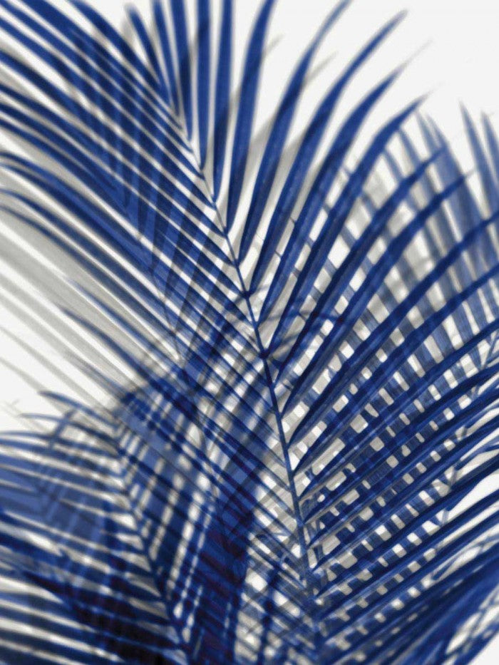 Palm Shadows Blue I - MELONIE MILLER